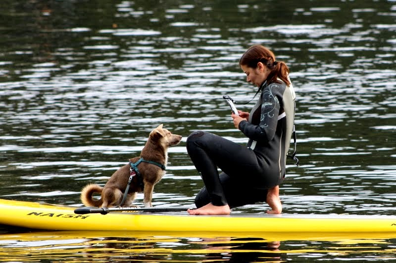 SUP Dog Kurse Stand Up Paddling mit Hund Alster Hamburg IV